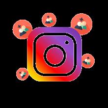 1000 followers instagram