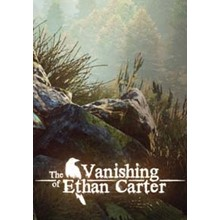 The Vanishing of Ethan Carter (Steam) @ Region free