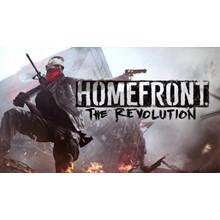 Homefront: The Revolution Steam key (RU-CIS)