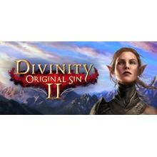 Divinity: Original Sin 2 - Eternal Edition | Steam Gift