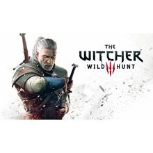 🤠The Witcher 3 Wild Hunt (STEAM) (Region freе)