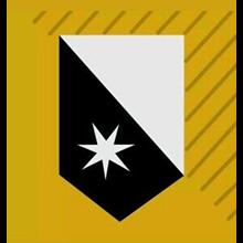 ✅Destiny 2 Emblem: Peace of the City [PS\Xbox\PC] +Gift
