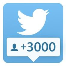 3000 followers Twitter