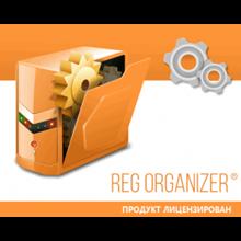 Reg Organizer   License