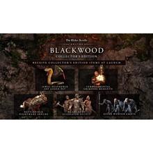TESO: Blackwood Collector's Edition ✅(STEAM KEY)