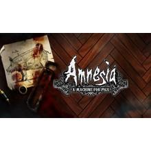 Amnesia + Kingdom New Lands | Full access |
