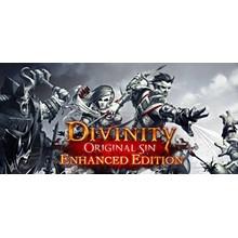 Divinity: Original Sin Enhanced Edition [SteamGift/RU]