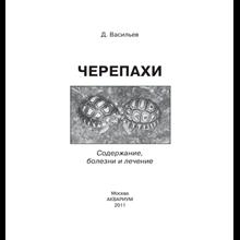 Turtles: maintenance, diseases and treatment - Vasiliev