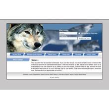 Design for wolf chat (IM Dmitry Borodin)