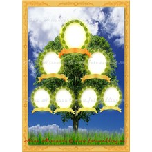 Collage - Frame Family Tree