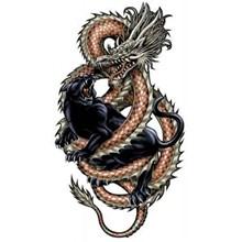 tattoo dragons (25pcs)