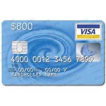 800$ VISA VIRTUAL + statement, ONLINE 3DS. PRICE