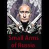 Small Arms of Russia (Стрелковое оружие России (EN))