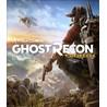 Ghost Recon Wildlands  (Ключ для Uplay)+ Бонус