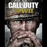 Call of Duty: WWII  ( steam key RU )